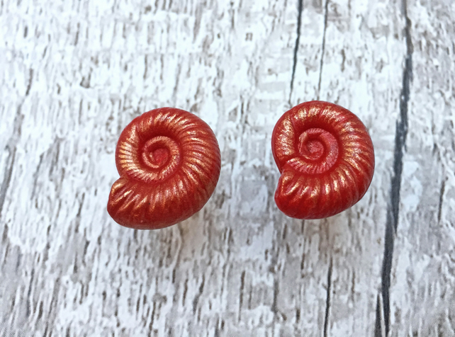Red Ammonite fossil stud earrings with gold highlights