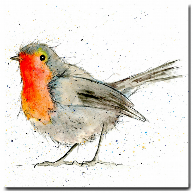 Robin Greeting Card - Bird Card - Blank Inside