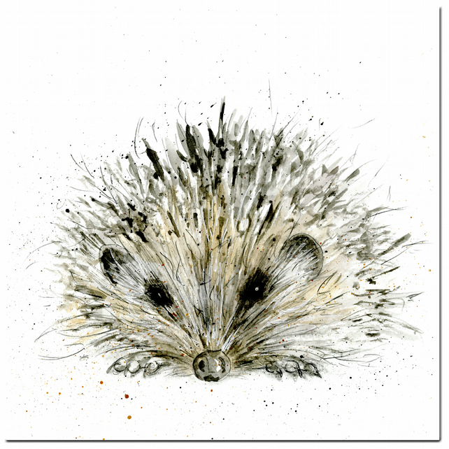 Hedgehog Greeting Card - Woodland, Blank inside, Birthday