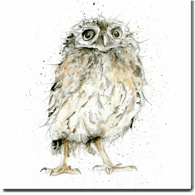 Owl Greeting Card, Blank inside, Watercolour, Woodland