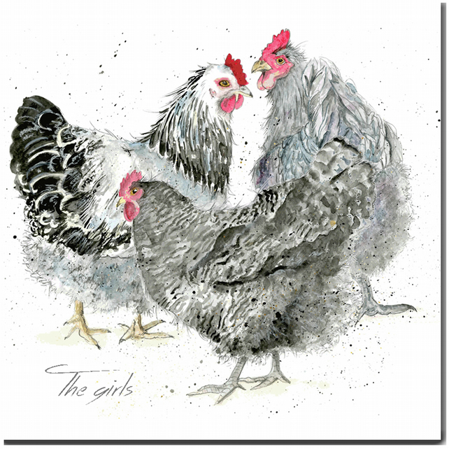 Chicken Card - The Girls- Hen Birthday Card, Blank inside, watercolour