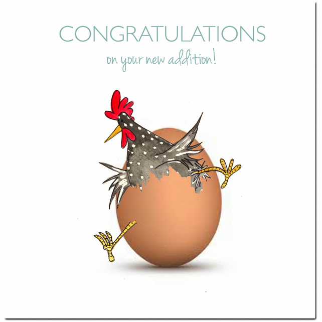 Fun New Baby or New Parents Card - Congratulations - Blank inside - Chickens