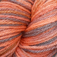 'Pumpkin Patch' - BFL Aran Hand Dyed Yarn 100g