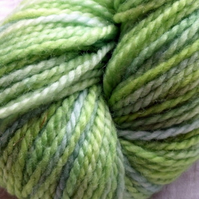'Leafy' - Superwash BFL Aran Hand Dyed Yarn 100g