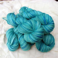 Reserved for Carley - Lagoon Superwash BFL Aran 500g