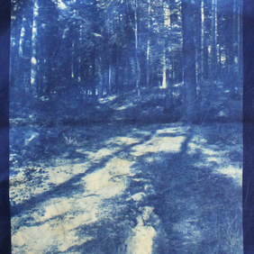 Tote bag with Cyanotype image of Bacton Wood.