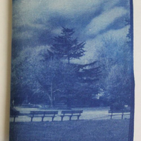 Norwich Chaplefield Park Cyanotype Needle Case