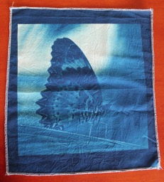 Cyanotype panel 'Butterfly', 100% Cotton Fabric