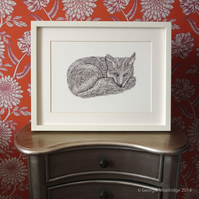 'Curled up Fox' A4 Giclee Print