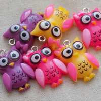6 Colourful Resin Owl Charms Pendants Mixed 25 x 16 mm