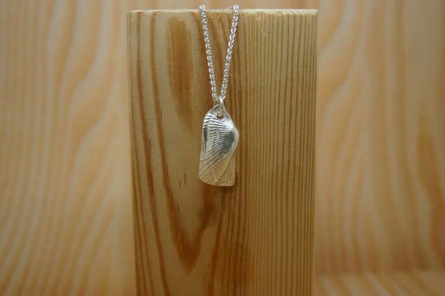 Fine Silver Turkey Wing Ark Sea Shell Necklace