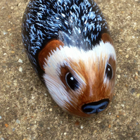 Hedgehog Hand painted rock