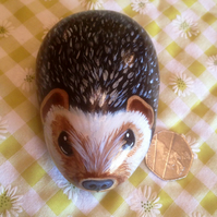 Hand painted rock hedgehog