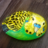Budgie hand painted pet on rock