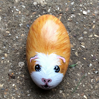Guinea pig hand painted on small stone
