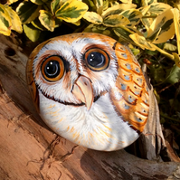 Owl hand painted on rock