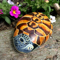 Tortoise hand painted large pebble