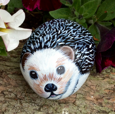 painted pebble hedgehog