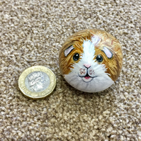 Guineapig hand painted oebbke rock pet stone painting
