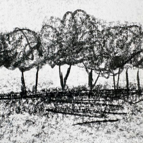 Hedgerow: original graphite drawing