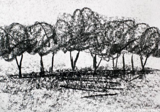 Overgrown Hedgerow: original graphite drawing