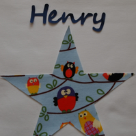 Pyjamas, Personalised with Childrens Names & a Blue Owl Star Trim