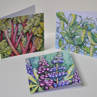 Gardeners greeting cards - (Pack of three)