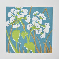 Cow parsley lino print