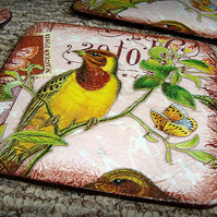 Coasters Coaster Set of 4, birds flowers pink green