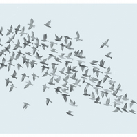 Starling Murmuration on Blue (A5)
