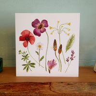 Weeds and Wildflowers Card Pack