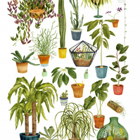 Green Family, houseplants print