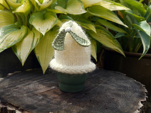 Christmas Mistletoe Egg Cosy