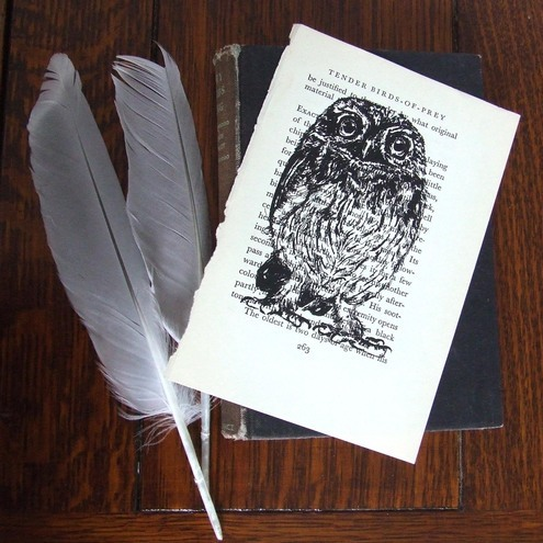 Print Tender Birds of Prey Little Owl Gocco Book Print