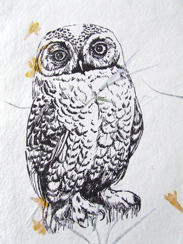 Snowy Owl In the Marigolds Gocco Print on Khadi Paper with petals