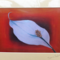 Peace Lily Print