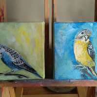 "Butch & Sundance ""The Outlaw Budgies"" Oil Paintings"