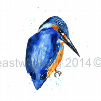Watercolour KINGFISHER  print