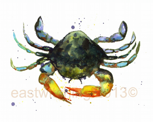 Watercolour CRAB painting