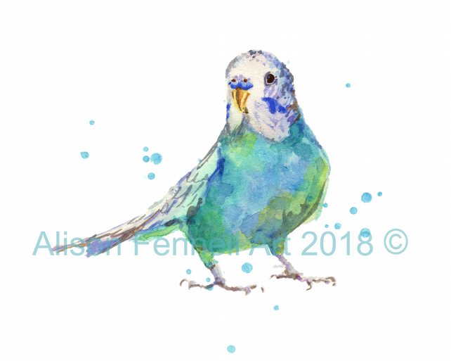 Budgie Watercolour Print