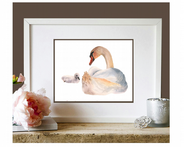 Swan Watercolour Print - adding grace to your space