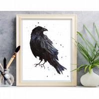 Watercolour Raven Print - 8x10 inch and frame ready