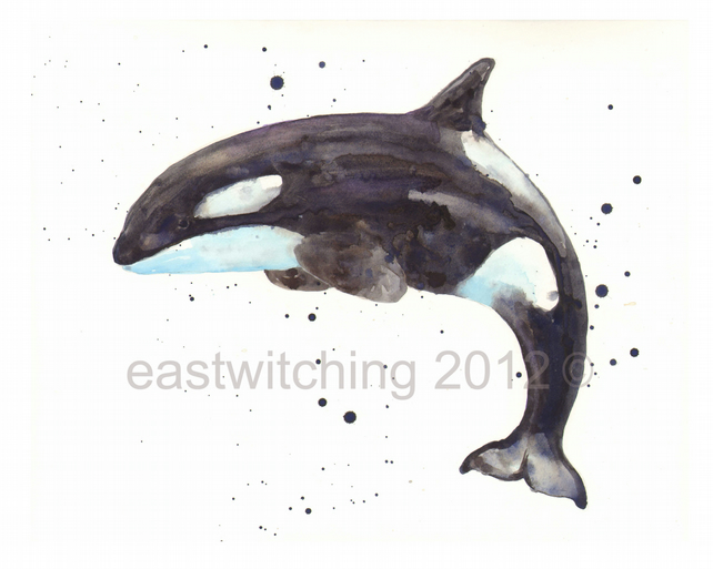 WHALE Art Print 8x10in- Killer Whale, nautical art, watercolour whale,