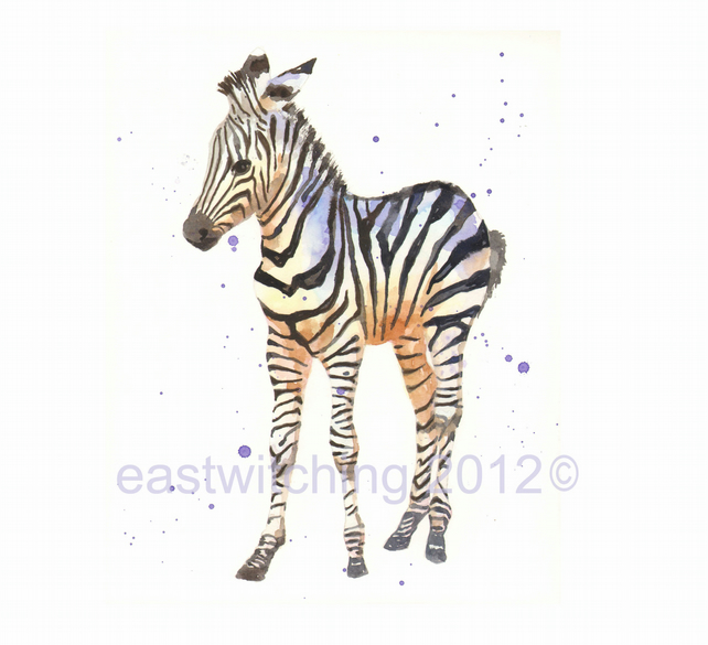 Baby Zebra Print, zebra art, cute baby zebra, nursery animal art