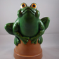 Ceramic Hand Painted Green Frog Toad Terracotta Plant Flower Pot Garden Ornament