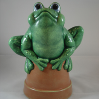 Ceramic Hand Painted Green Frog Animal Terracotta Plant Pot Garden Ornament.