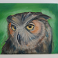 "Contemporary Original Oil Painting 12""x 10"" Great Horned Owl Ready to frame"