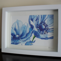 Large Blue Anemones - Framed Print