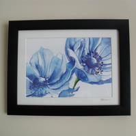 Blue Anemones - Framed Print (Black)