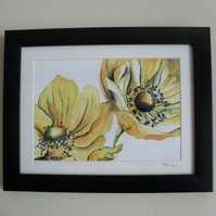 Yellow Anemones - Framed Print (Black)